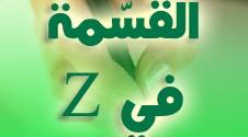 القسمة في Z