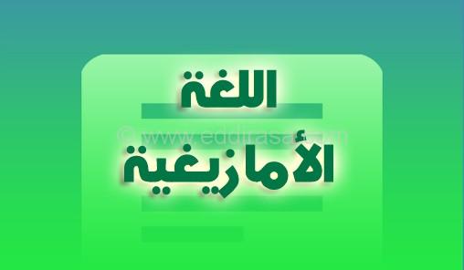اللغة الأمازيغية