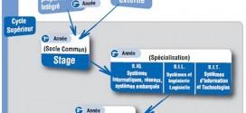 نظام الدراسة ESI